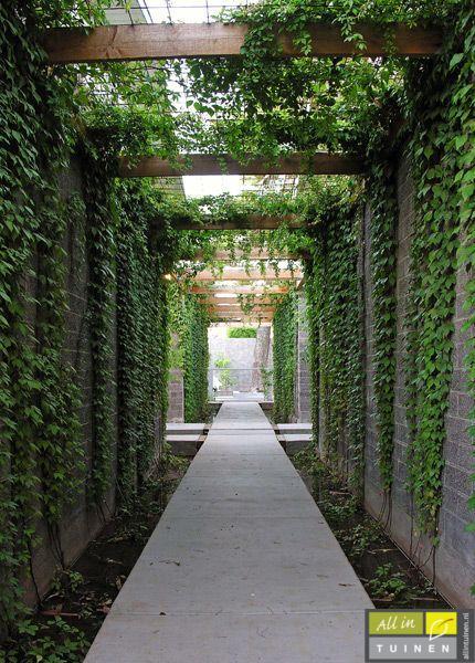 Binnen tuin bedijfstuin