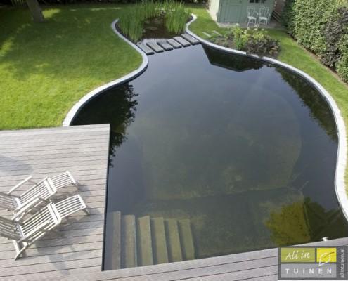 strakke zwemvijver met losse organische vorm.