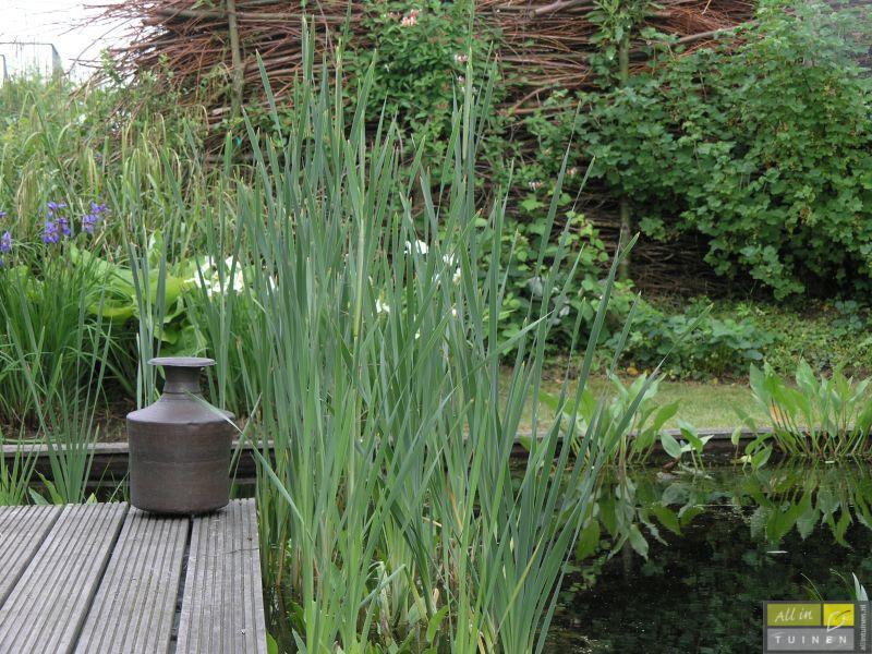 Tuin aanleggen m werkspot