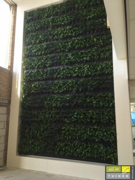 de groene muur