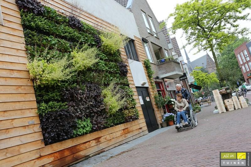 Nieuw verticale tuinen hoveniersbedrijf all in tuinen